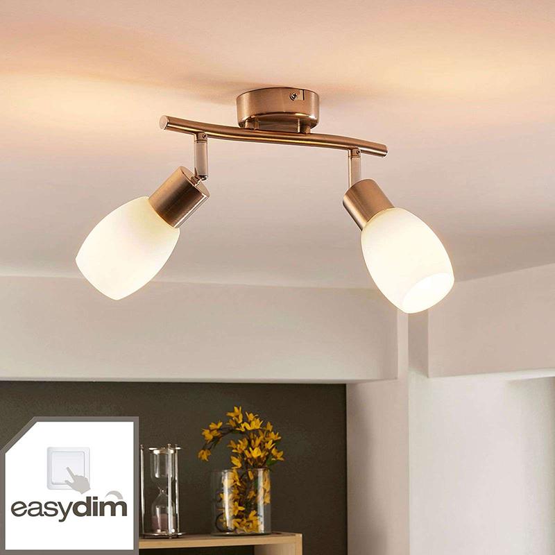 Plafondlamp chroom incl. E14 en easydim 2-lichts verstelbaar- Arda