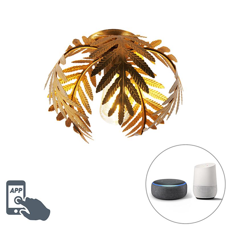 Elegancka lampa sufitowa vintage złota 24 cm z WiFi ST64 - Botanica