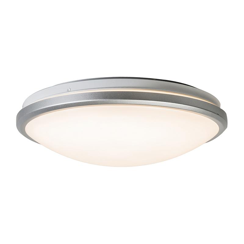 Plafonnière grijs incl. LED en bewegingsmelder - Captur