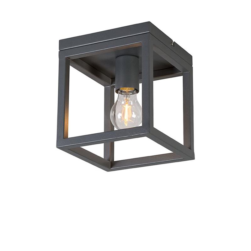 Industri�le plafondlamp antraciet - Cage 1