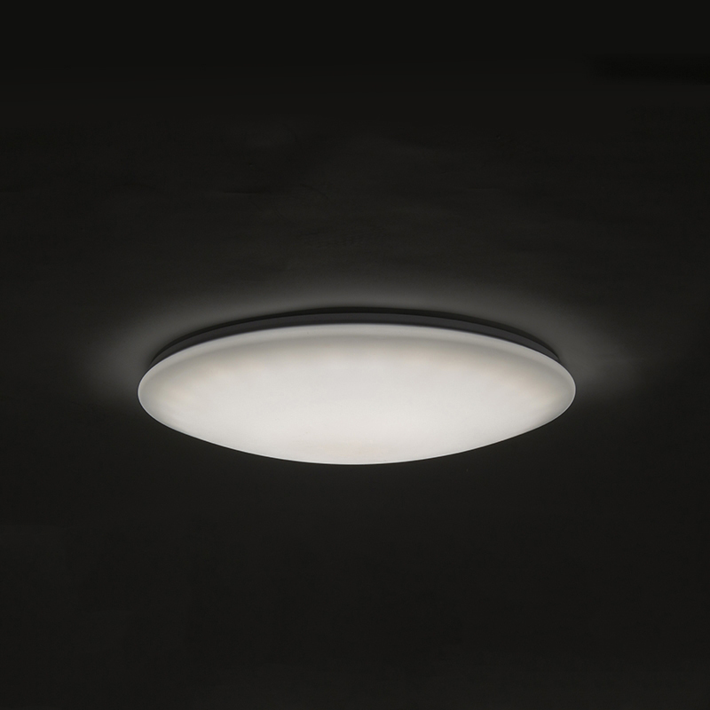 LED plafondlamp 60cm met afstandsbediening - Extrema
